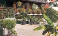 Gärtnerei-Laden Süd-Ansicht